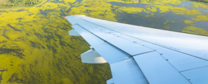 CORSIA is an important element to complement the basket of measures that ICAO is promoting to reduce the climate impact of flying. The other measures being undertaken include technological innovation, operational improvement, and the implementation of sustainable aviation fuels.